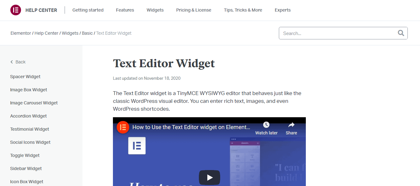 Elementor Review- Text Editor